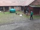 Winterquartier für die Ziegen